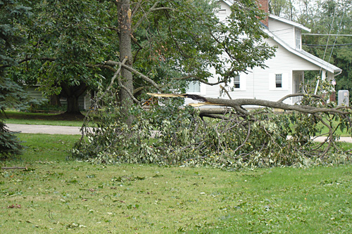Neighbor's tree sustained some damage.  And they just moved in, too.