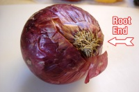 The root end of an onion has little stringy roots hanging from it.