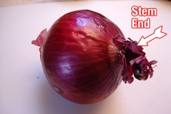How to Slice an Onion | SoupAddict.com