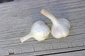Mmmm, garlic.  This fall, I'm planting an entire allium garden.