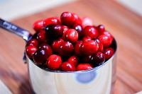 cranberrycoffeecake1b_121308