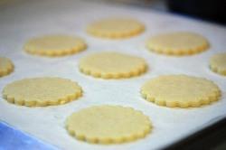 sablecookies0_122108