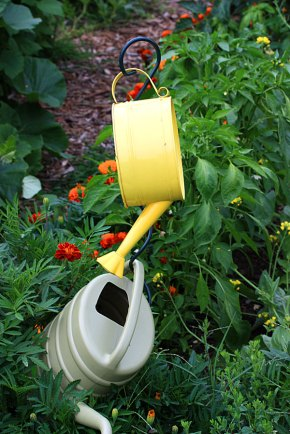 The cutest watering can ever.
