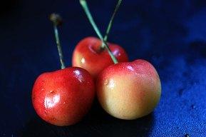 cherries1_080809