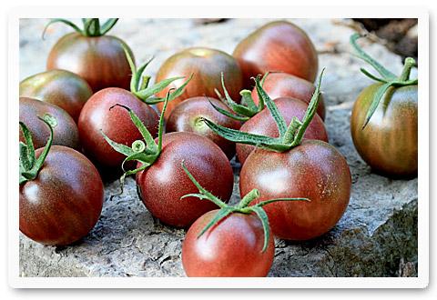heirloom tomatoes black cherry