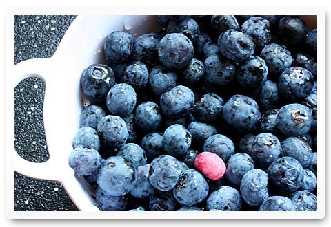 blueberries with sweet dumplings